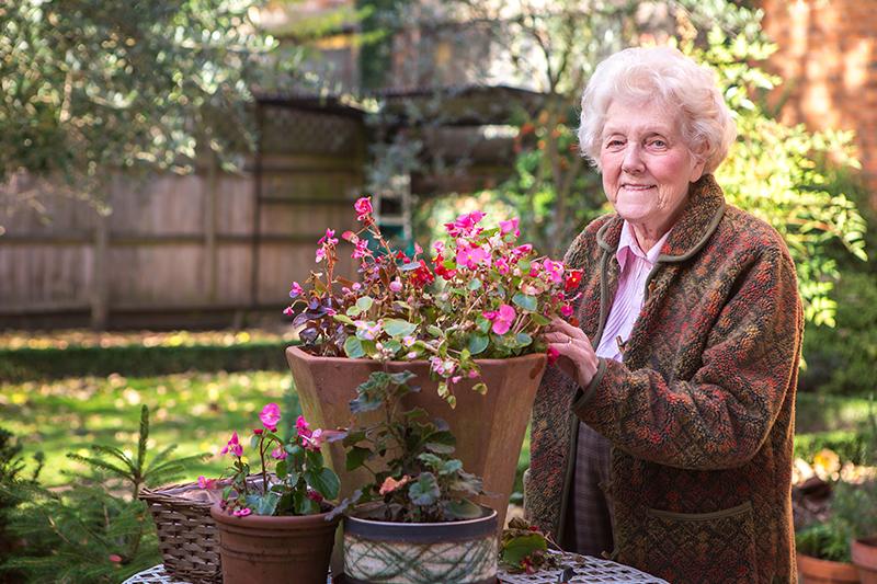 Client gardening pink flowers pot plant